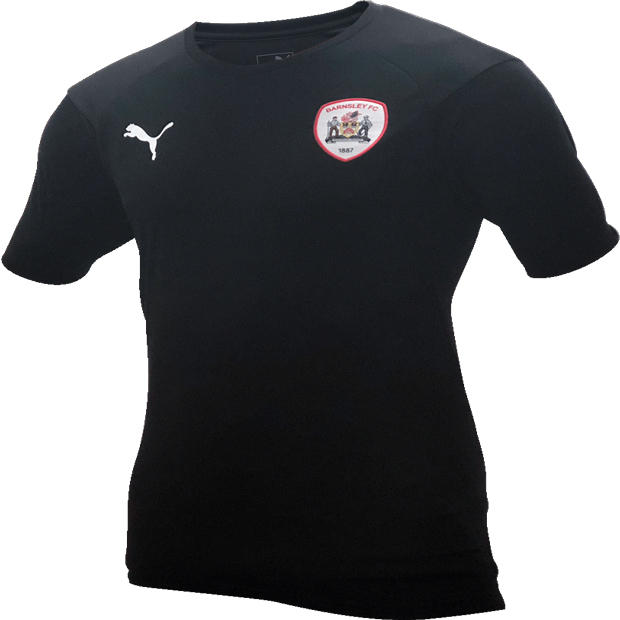 Puma Junior Training T-Shirt