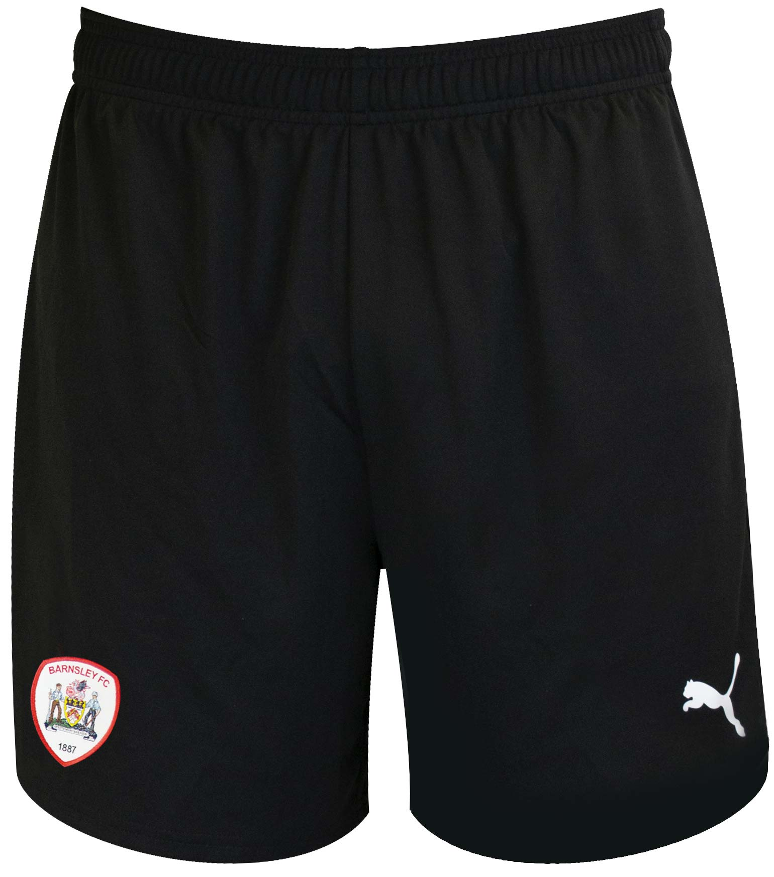 Puma Adult Away Short 18-19
