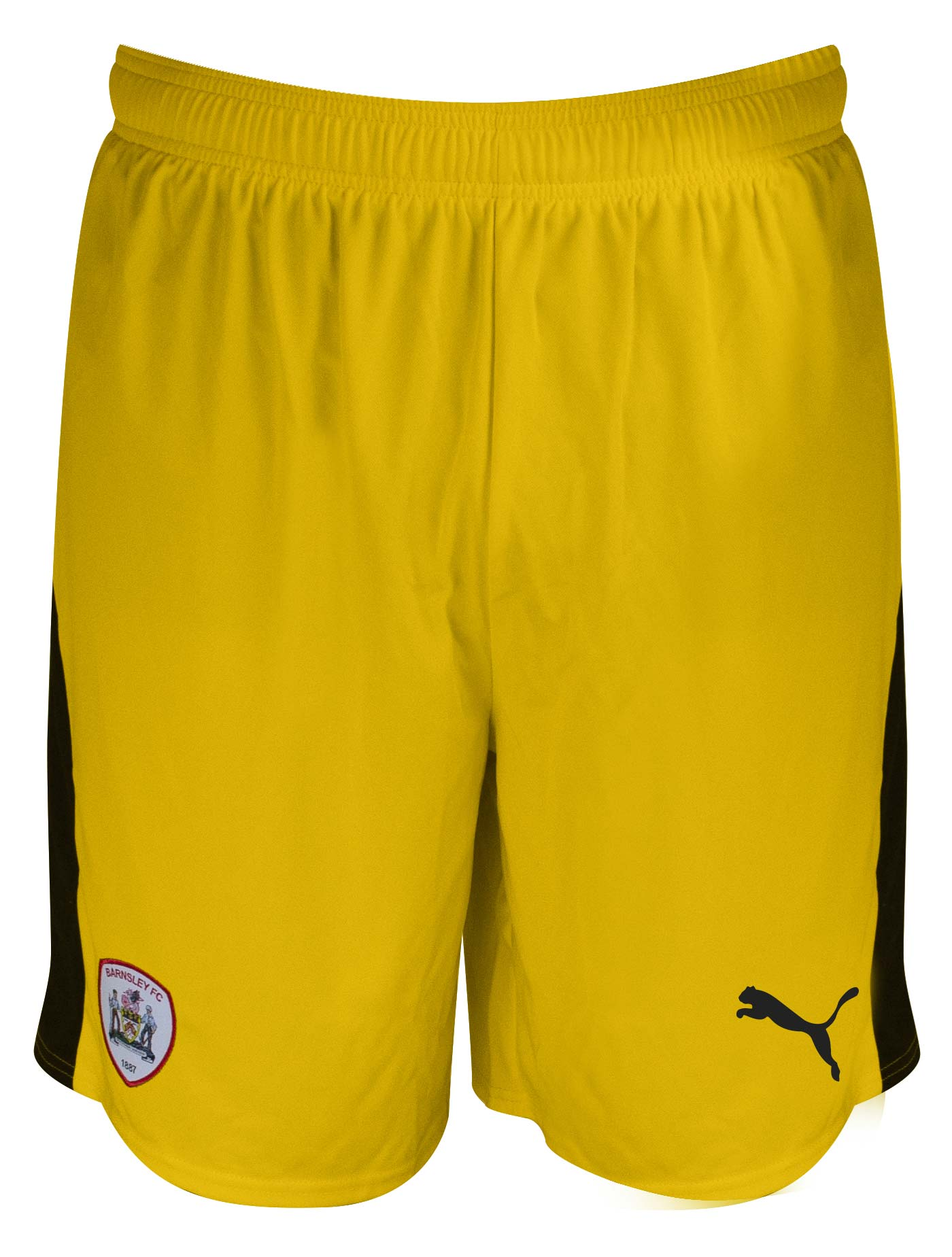 Puma Adult 3rd Goalkeeper Short 18