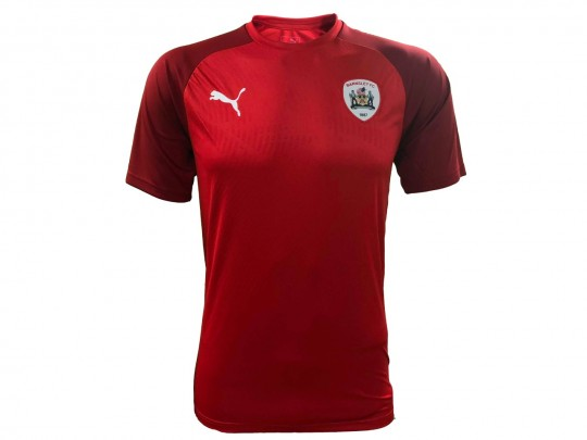 Puma Junior Red 2019-20 Training T-Shirt