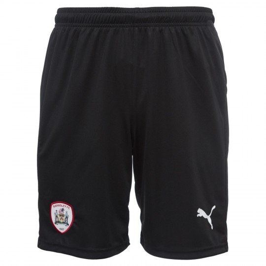 Puma Junior 2020 Training Short