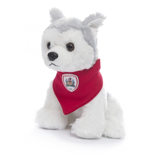 Puppy Soft Toy