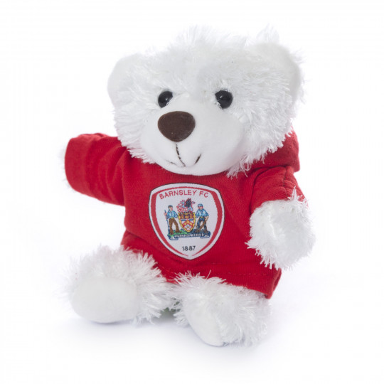 Small Dezzie Bear with Hoodie