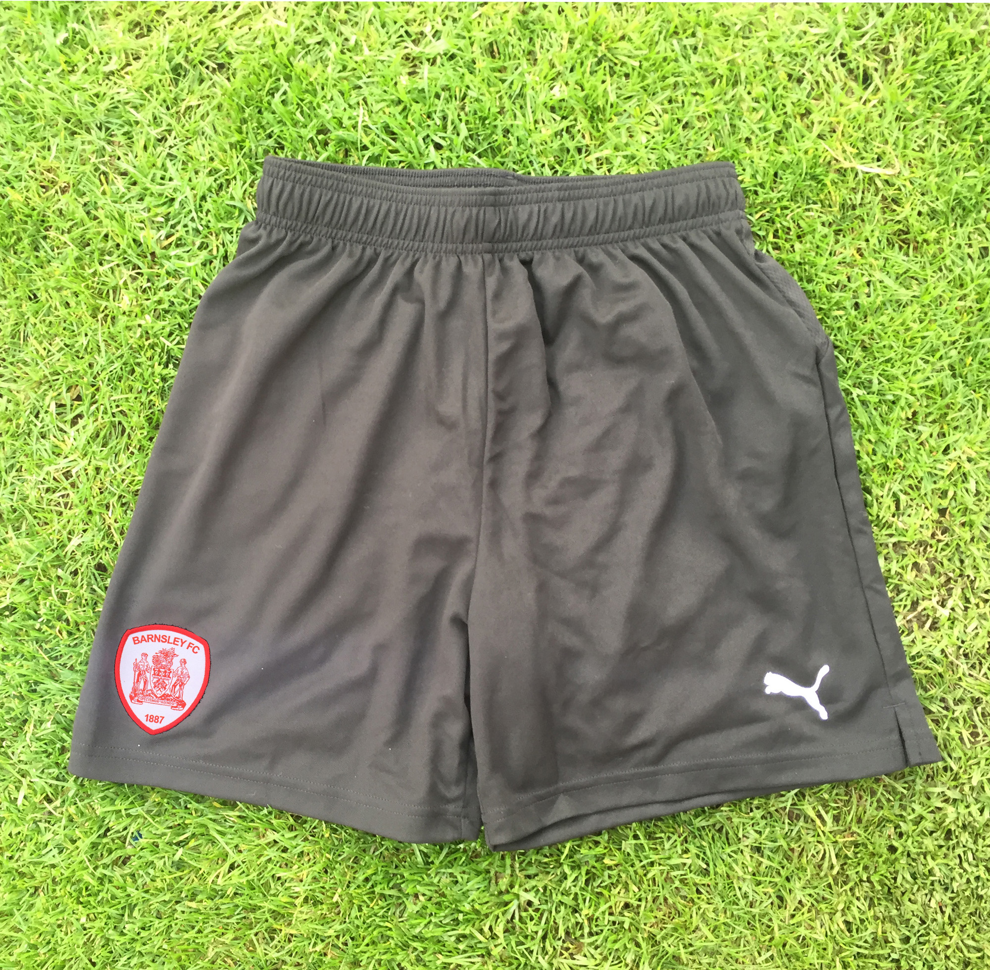 Puma Adult Ascension Training Short