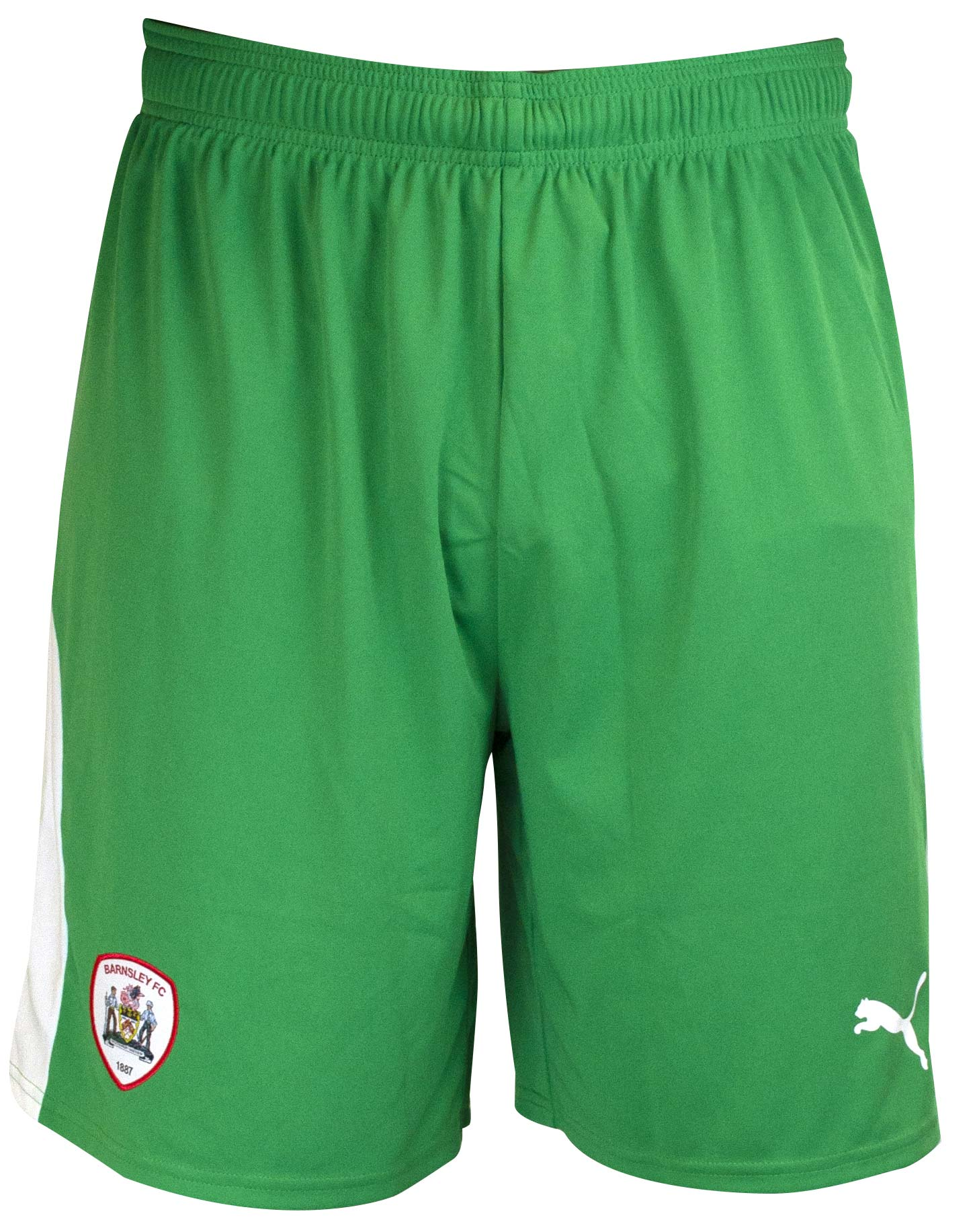 Puma Adult Home Goalkeeper Short 18